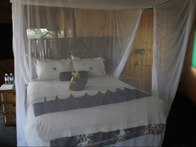 Pembury Tours - Camp Linyati - Chobe National Park - Botswana - Accommodation - Tent Interior