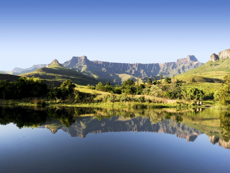 Pembury Tours - Drakensberg -Bird Watching