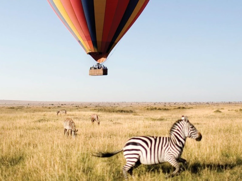 Pembury Tours - Tarangire National Park - Tanzania - Game Viewing - Game Drives - Hot Air Balloon Safari