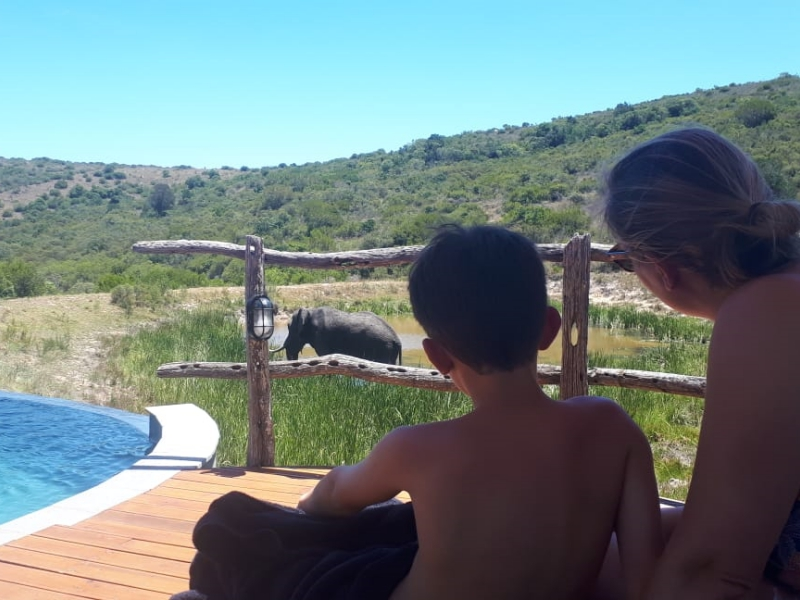 Pembury Tours - Family safari - Lalibela - mother and son watch elephant from deck