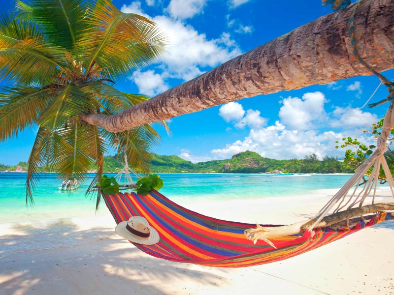 Pembury Tours - Beach Holiday - Seychelles - relax - hammock - palm trees - white sand