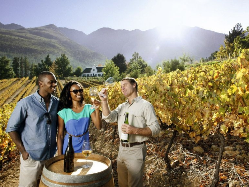 Pembury Tours - Honeymoon - Winelands - wine tasting
