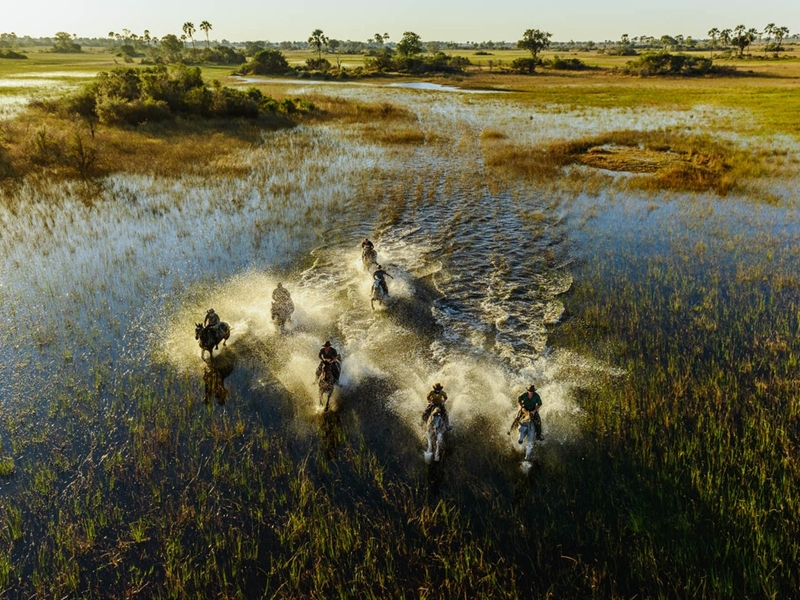 Pembury Tours - Okavango Delta - Adventure Activities - Horseback Safaris - Game Viewing