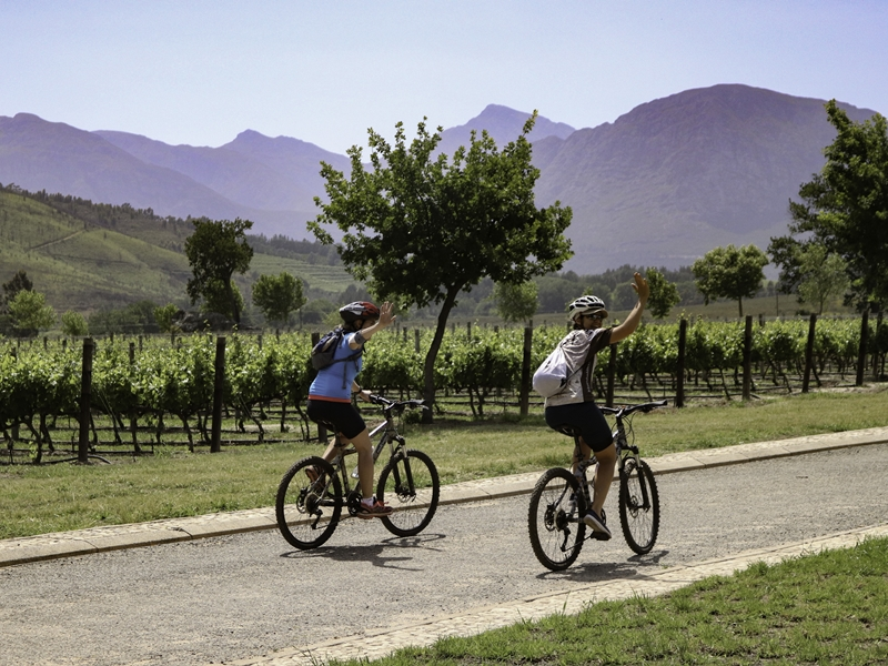 Pembury Tours - Cape Winelands - Franschhoek Bike and Wine Tour - Adventure Activities - Wine Tasting - Bicycle Tour