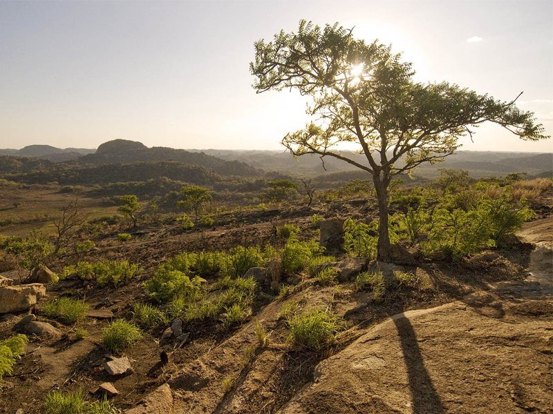 View-Matobo Hills-Pembury Tours