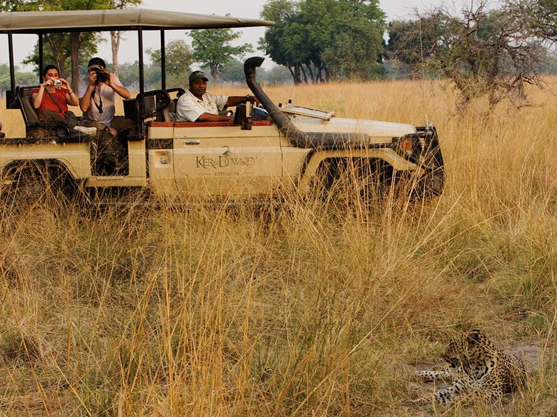 Pembury Tours - Shinde & Kanana Camp - Ker & Downey - Okavango Delta - Botswana - Game Viewing - Game Drives - Big Five - Leopard