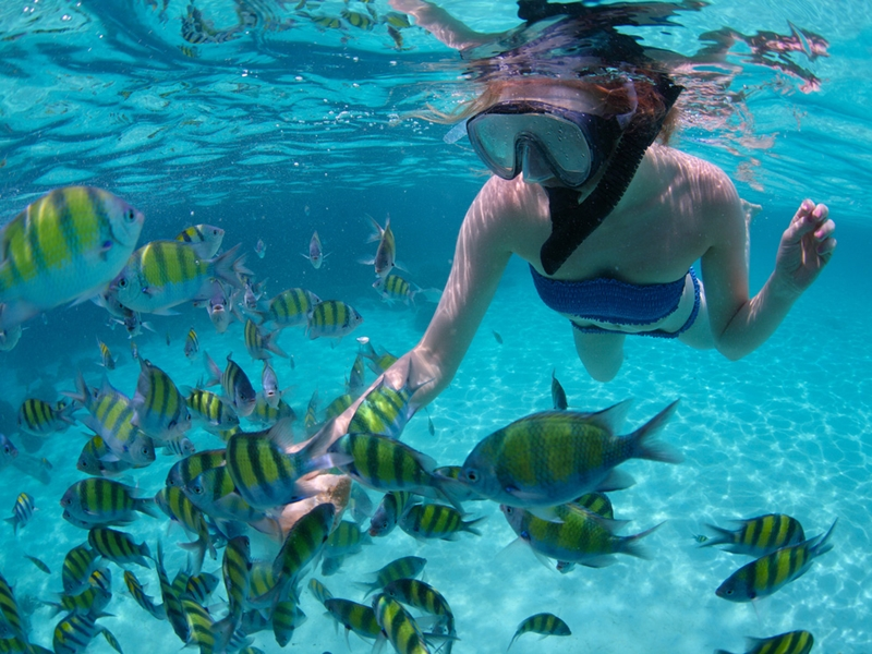 Pembury Tours - Eau Bleue Waterfalls - Mauritius - Adventure Activities - Snorkeling