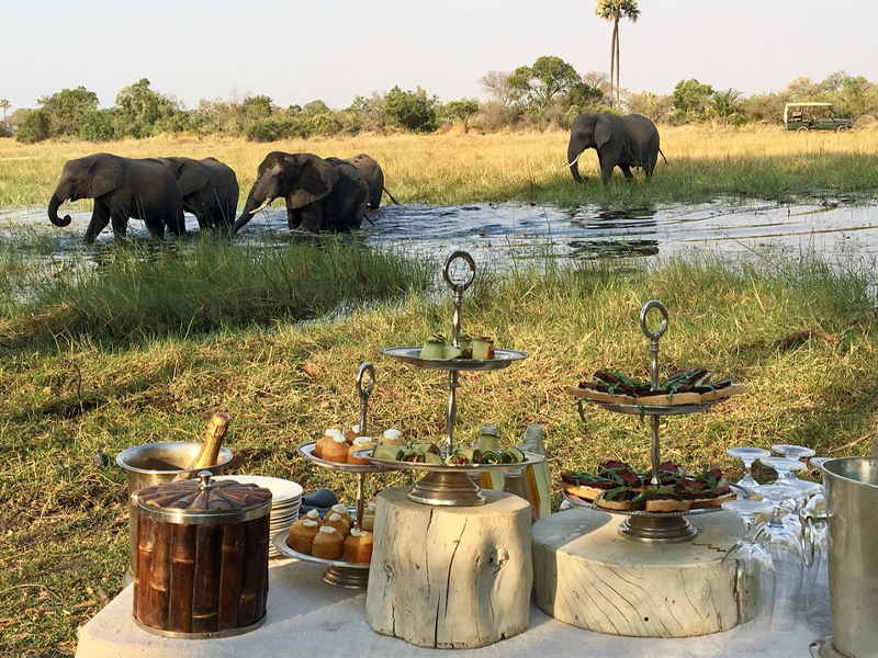 Pembury Tours - Abu Camp - Okavango Delta - Botswana - Dining - Afternoon High Tea