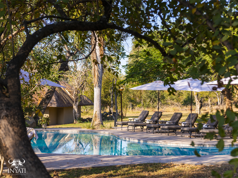 Pembury Tours - Inyati Game Lodge - Sabi Sands Private Game Reserve - Kruger National Park - Accommodation - Pool