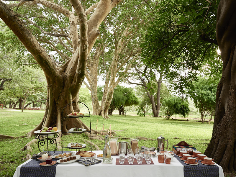 Pembury Tours - Sanctuary Retreats - Chobe Chilwero - Chobe National Park - Botswana - Accommodation - High Tea