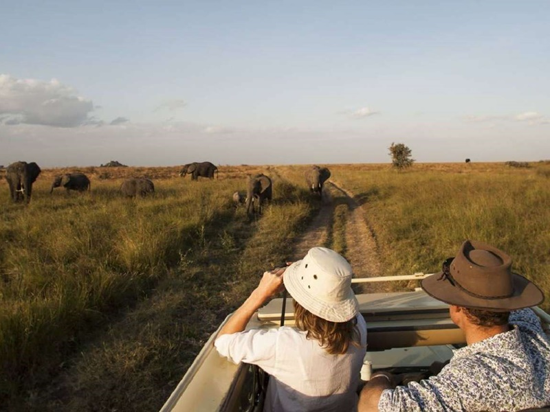 Pembury Tours - Mbugani Migration Camp - Serengeti - Tanzania - East African Safari - Tented Camp Accommodation - Game Drive