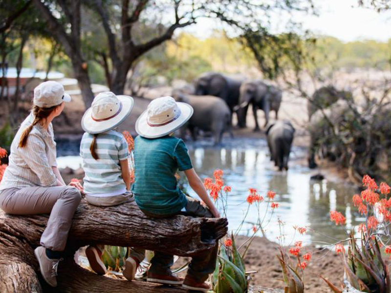 A mom and children watch elephants at a watering hole on a family-friendly safari