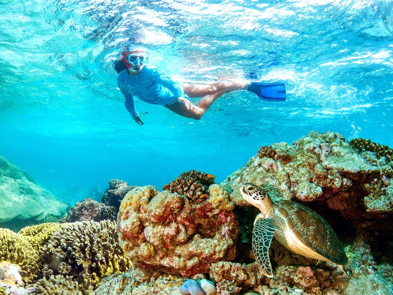 Pembury Tours - Seychelles - Mahe & Praslin Island - Beach Activities - Indian Ocean Isalnds - Snorkeling