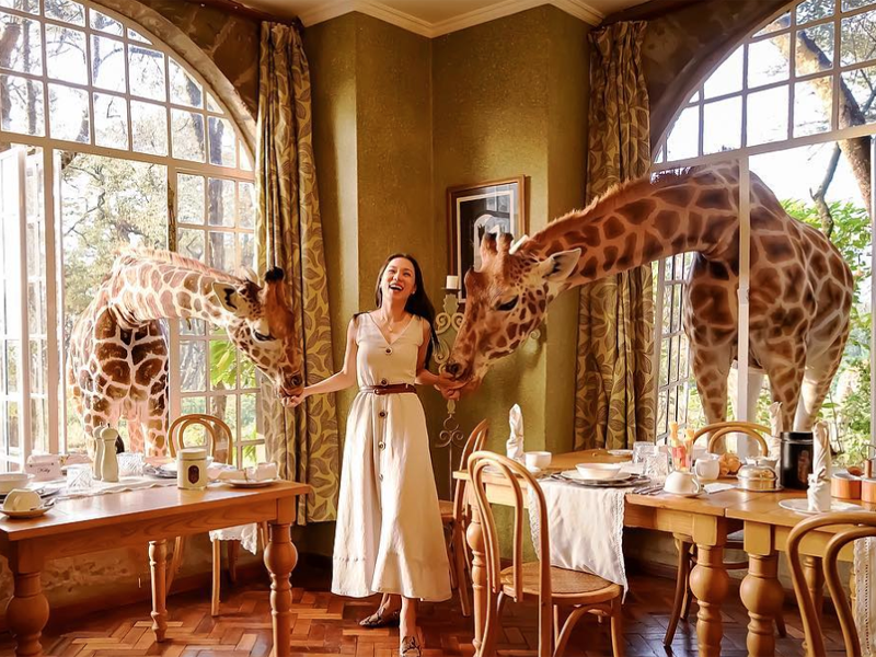 Pembury Tours - Giraffe Manor - Dining Room