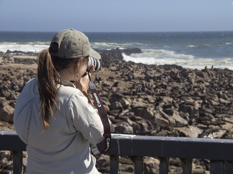 Pembury Tours - Swakopmund Day Trip - Cape Cross - Henties Bay - Skeleton Coast - Namibia - Activities - Seal Colony