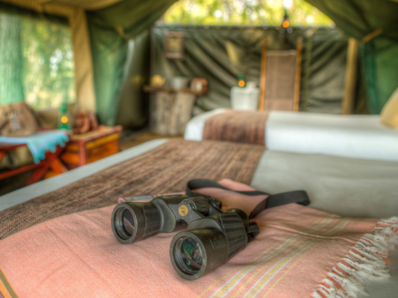 Pembury Tours - Child Friendly Safari Lodges - Botswana - Ker & Downey - Footsteps Camp